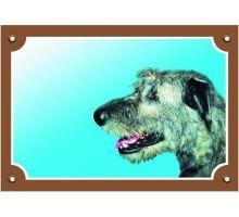 Farebná ceduľka Pozor pes Írsky vlkodav