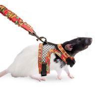 Karlie Postroj s vodítkom pre potkany veľkosť S
