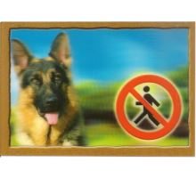 Ceduľka 3D Pozor pes Nemecký ovčiak