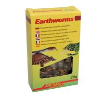 Lucky Reptile Earthworms 10 g