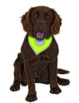 Šatka na krk reflex Safety Dog Žltý 48-60cm KARLIE