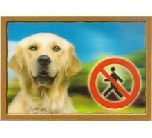 Ceduľka 3D Pozor pes Zlatý retriever