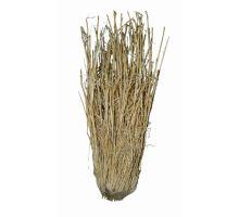 Lucky Reptile Grass Bushes 25-40 cm