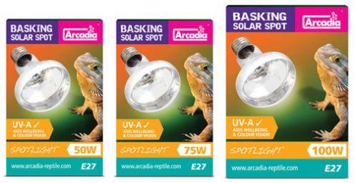 Arcadia Basking Solar Spot