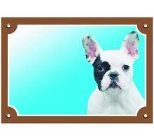 Farebná ceduľka Pozor pes Francúzsky buldoček svetlý