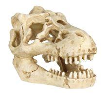 Sada 6 ks zvieracích lebiek 8 - 11 cm