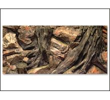 Pozadie AE Root 100 x 50 cm 1ks