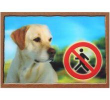 Ceduľka 3D Pozor pes Labradorský retríver (béžový)