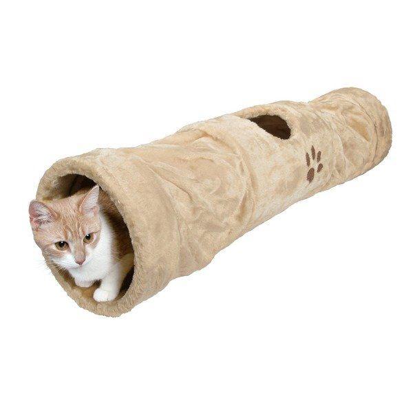 pic dospievajúci mačička