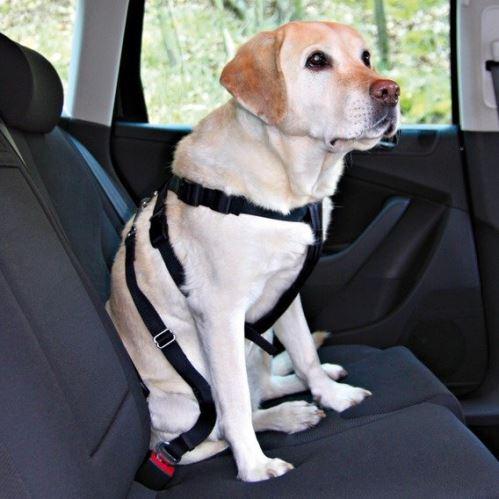 Postroj pes Bezpečnostný do auta L 70-90cm VÝPREDAJ