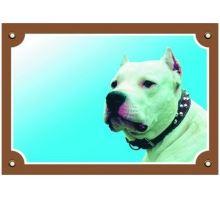 Farebná ceduľka Pozor pes Doga argentínska