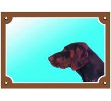 Farebná ceduľka Pozor pes Nemecký stavač hnedý
