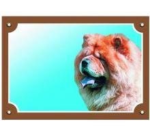 Farebná ceduľka Pozor pes Čau čau