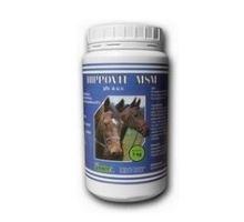 HIPPOVIT MSM 1kg