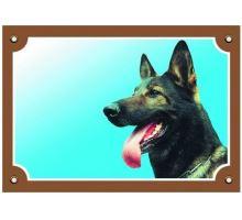 Farebná ceduľka Pozor pes Nemecký ovčiak vlkošedý