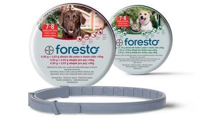 Foresto 38 obojok pre mačky a malé psy