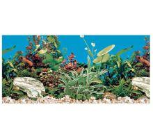 Akvarijné pozadie obojstranné 60 x30 cm