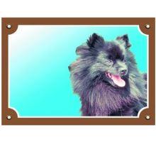 Farebná ceduľka Pozor pes Čierny špic