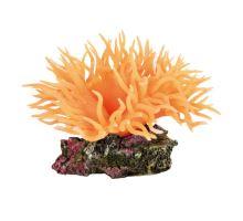 Morská riasa oranžová 11 cm TRIXIE