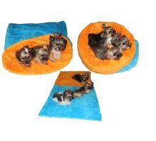 Pelíšek MAX - modrá/oranžová
