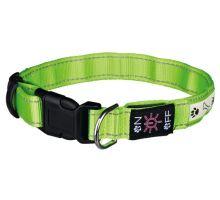 Svietiace obojok USB M - L 40-50 cm / 25 mm zelený