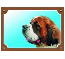 Farebná ceduľka Pozor pes Bernardín  VÝPREDAJ