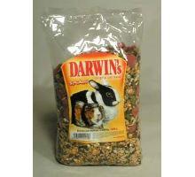 Darwin morča, králik štandard 1kg