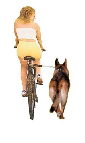 Karlie-Flamingo Vodítko na bicykel WalkyDog plus