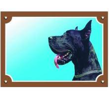 Farebná ceduľka Pozor pes Doga čierna