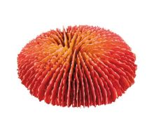 Sada koralov 4 ks 10-13cm TRIXIE