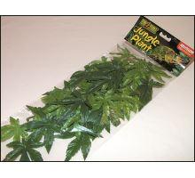 Rastlina EXO TERRA Abuliton stredný 55 cm 1ks