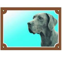 Farebná ceduľka Pozor pes Doga modrá