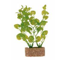 Plastové rastliny s podkladovým pieskom 20 cm