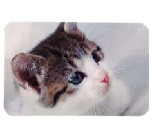 Prestieranie pre mačku pod misky - fotka mačky 43 x 28 cm