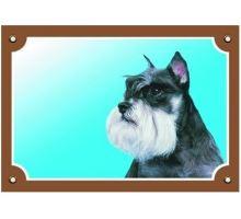 Farebná ceduľka Pozor pes Bradáč korenie a soľ