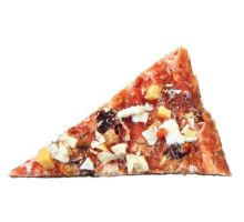PREMIO Chicken Pizza 100g - kuracie pizza pre psov