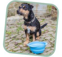 Miska pre psa, cestovné, BecoBowl Travel EKO modrá
