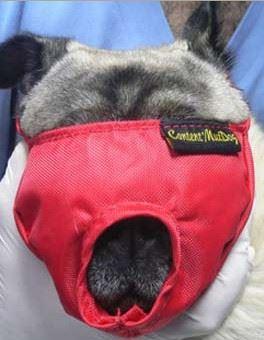 Náhubok fixačné s prikrytím očí pre psov L