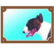 Farebná ceduľka Pozor pes bullteriér