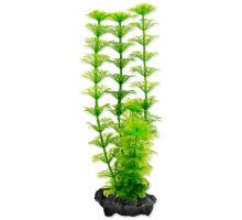 Rastlina TETRA Ambulia S