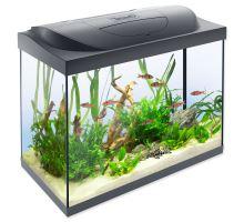 Akvárium set TETRA Starter Line LED 61 x 32 x 51 cm 80l